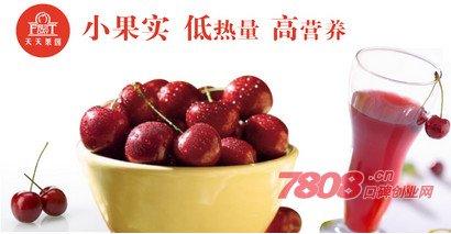 上海天天果园官网加盟电话多少