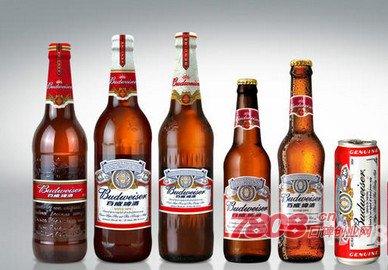 啤酒代理,哈尔滨啤酒代理,县级哈尔滨啤酒代理