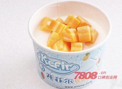 开菲尔酸奶怎么样,开菲尔酸奶加盟,开菲尔酸奶