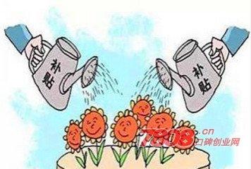 枣庄市,大众创业,创业政策
