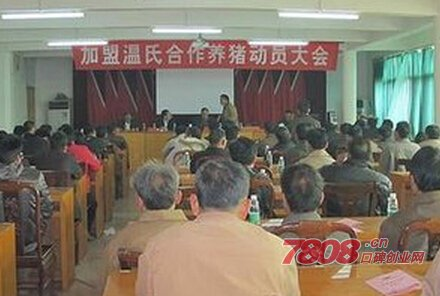 广东温氏养猪加盟电话是多少
