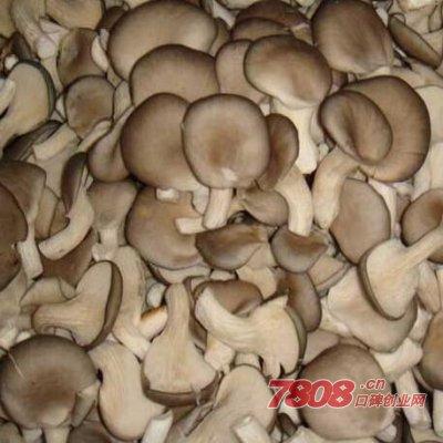 种植平菇一年能挣多少钱